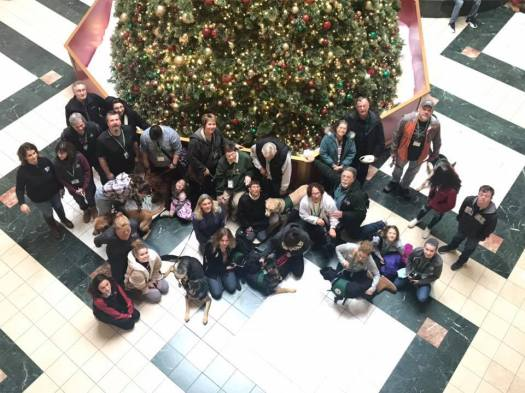 An overhead view of our puppy raisers and their puppies standing in front of a large Christmas tree.